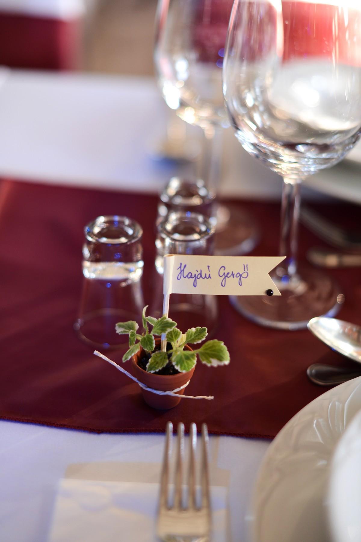Kövirózsa esküvői ajádék