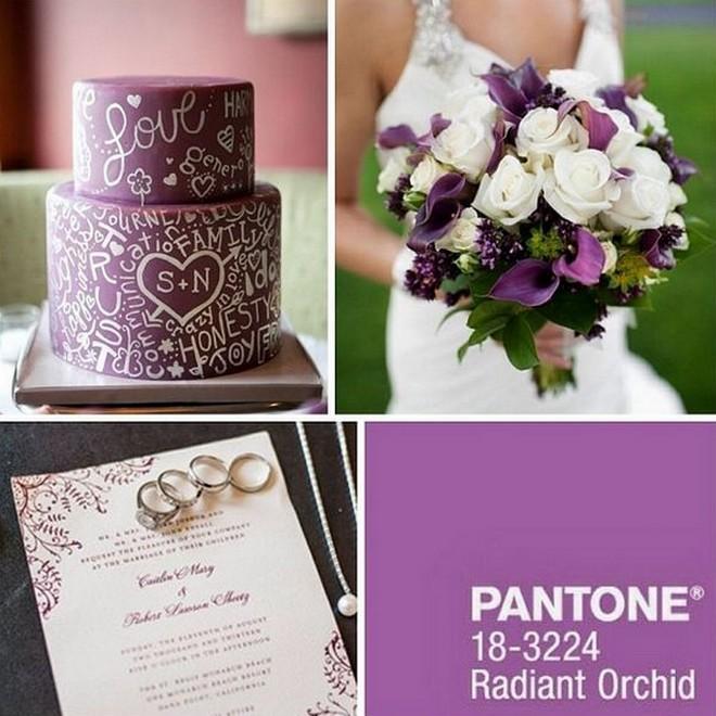 . A ragyogó orchidea a fukszia és a lilás rózsaszín varázsaltos harmóniája, melyből bizalom, öröm, szeretet és egészség árad.