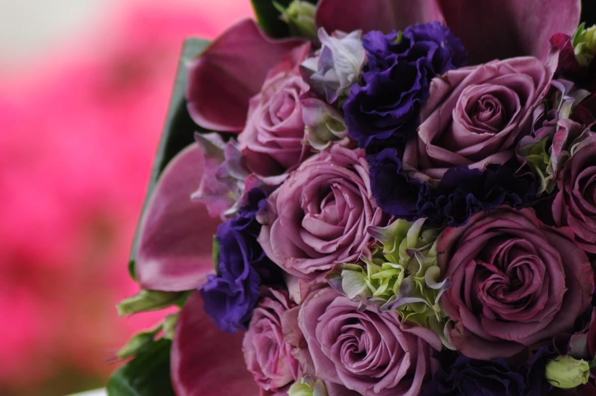 A Rózsát a szerelem jelképeként tartják számon, de különböző színeinek, különböző jelentése van: A Vörös: a szerelemé Sárga: öröm és vidámság, vagy barátság. Azonban a sárga szín miatt féltékenységet is jelenthet. Fehér: kiérdemelt szerelem, valamint a szülői szeretet virága is. Rózsaszín: kecsesség.