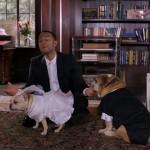 John Legend kutyaesküvőt tartott